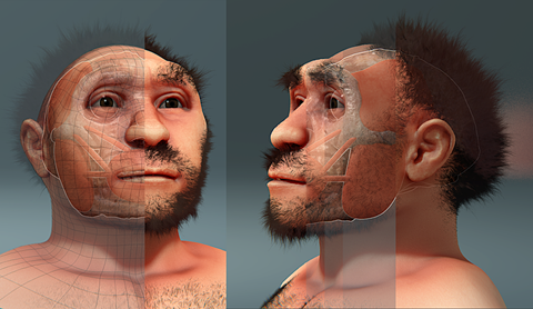 http://upload.wikimedia.org/wikipedia/commons/8/87/Homo_erectus_pekinensis%2C_forensic_facial_reconstruction.png